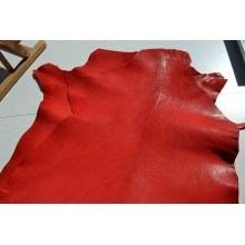 Scarlet Oasis Leather