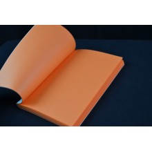 carnets de couleur orange